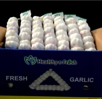 Garlic Fresh P/P 7 pcs 28ct