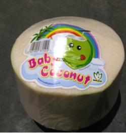 Drinking Coconut Baby 12ct-Healthy Fresh
